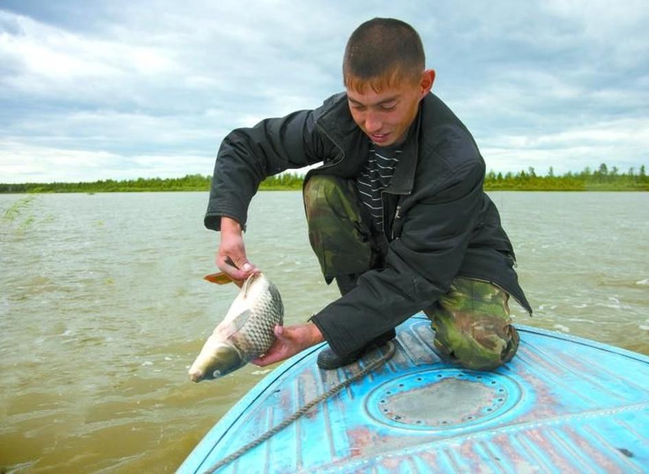 Прогноз погоды, который мы используем для рассчёта клёва рыбы в селе Уват