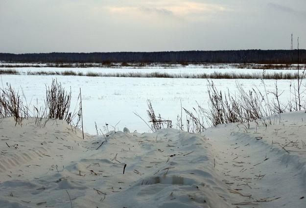 Самый реальный прогноз на13— Погода вЭстонии