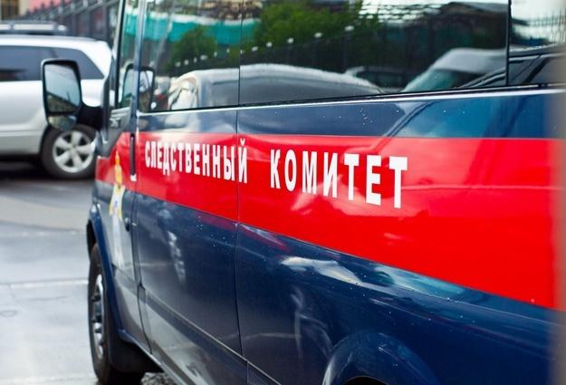 По факту распространения АЧС в Исетском районе возбуждено уголовное дело