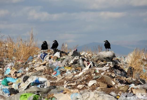 В 2018 вТюменской области откроется 4 мусороперерабатывающих завода