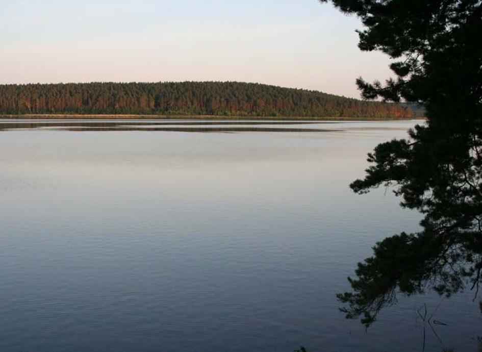 платные озера в свердловской области для рыбалки