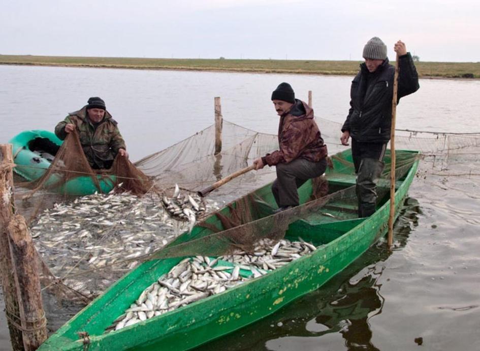 правила ловли рыбы на прудах арендованных