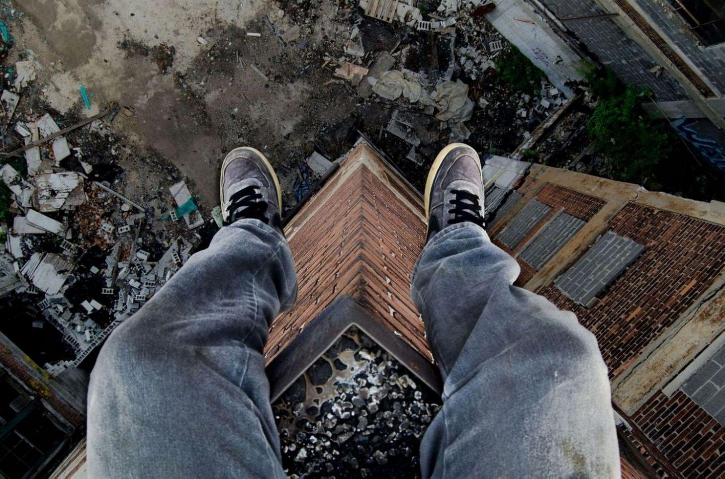 бородатый фото прыжок с крыши домашняя курочка, выращенная