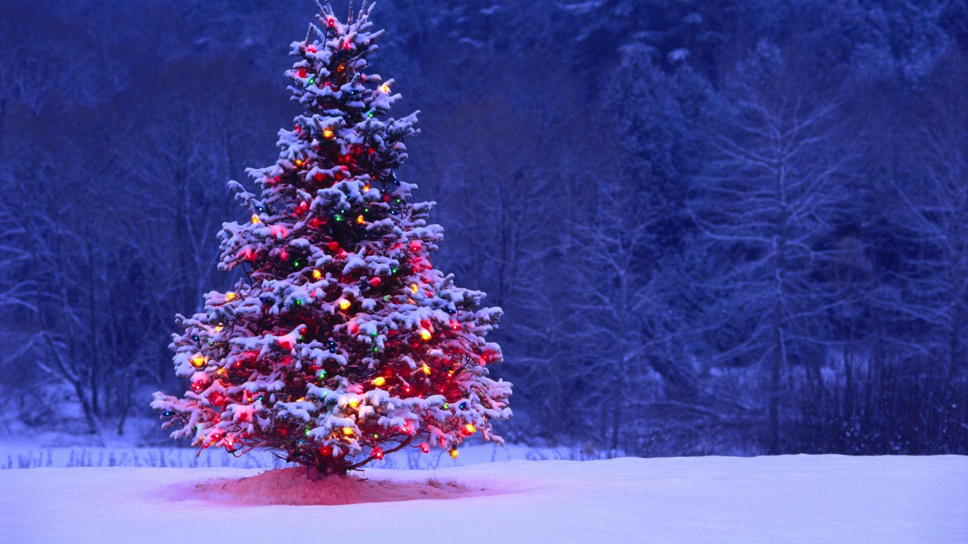 обои для рабочего стола новогодние зима № 616294 бесплатно