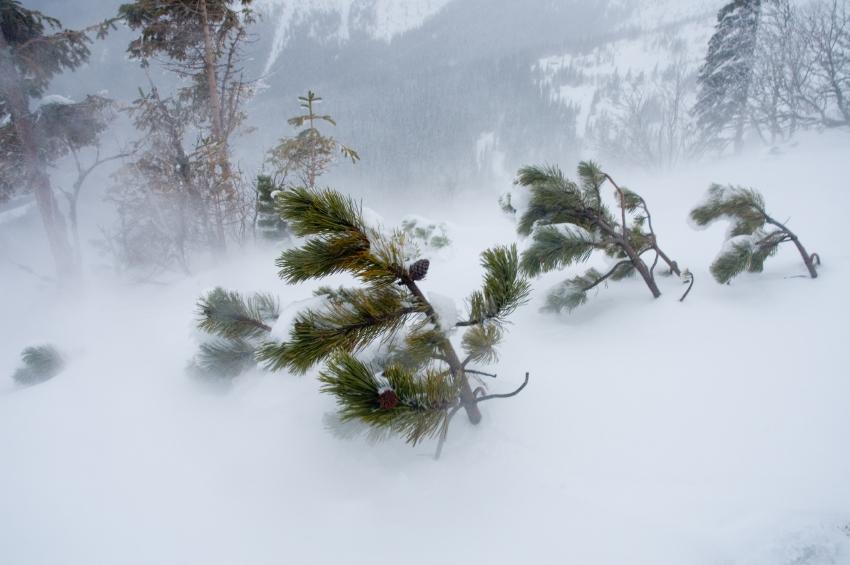Холодный февраль картинки
